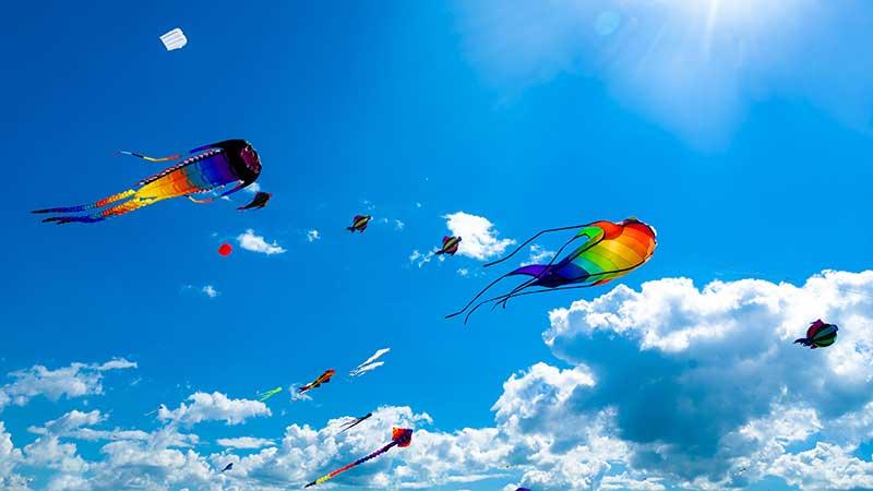 group of kites